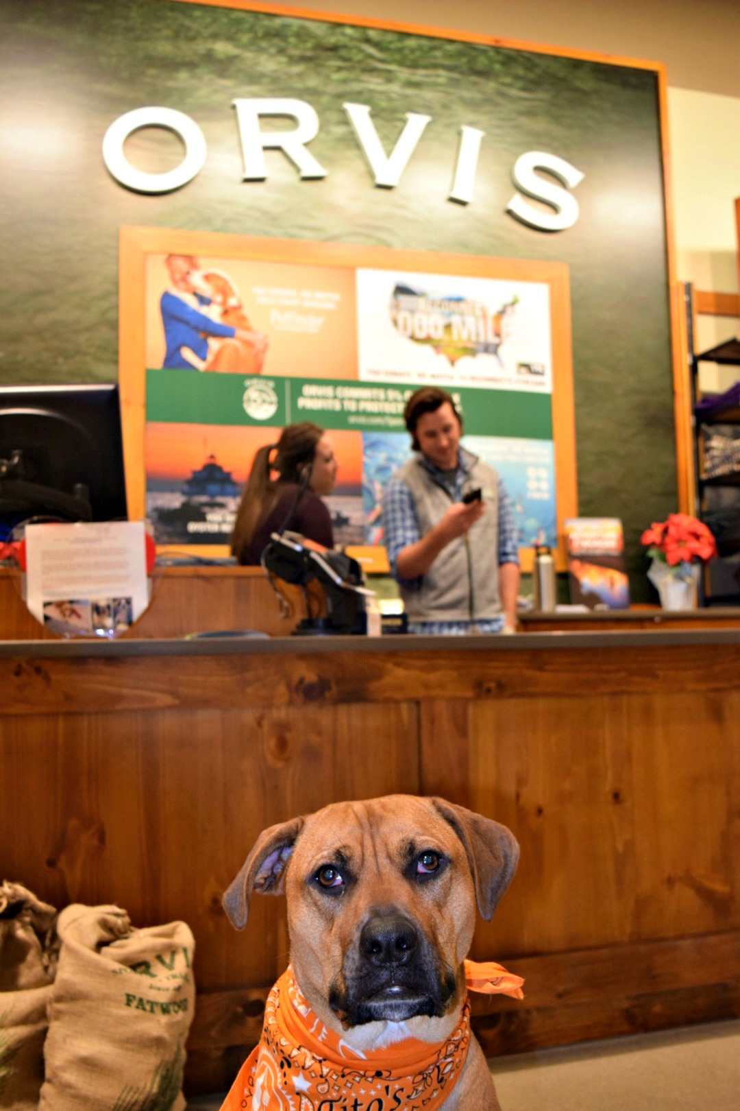 Orvis | Dog Life in CLE