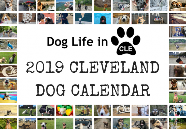 2019 Cleveland Dog Calendar Release Party | Dog Life in CLE
